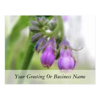Purple Comfrey Flowers Postcard