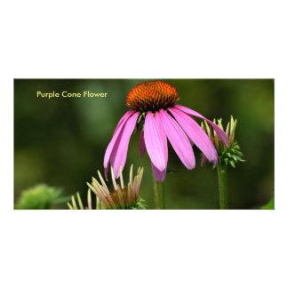 Purple Cone Flower Card