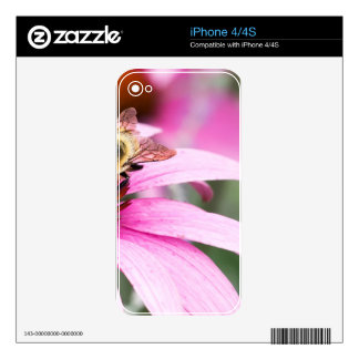 Purple Cone Flower with Bee Skin For The iPhone 4S