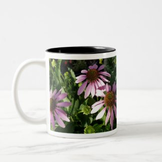 Purple Cone Flowers Two-Tone Coffee Mug