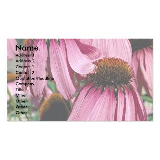 Purple coneflower, echinacea purpurea Double-Sided standard business cards (Pack of 100)