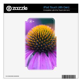 Purple coneflower (Echinacea purpurea) iPod Touch 4G Skin