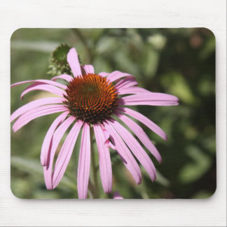Purple Coneflower Mouse Pad