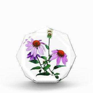 Purple Coneflower Paperweight Acrylic Award