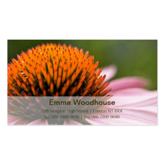 Purple Coneflower | Sonnenhut Double-Sided Standard Business Cards (Pack Of 100)