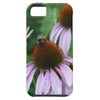 Purple Coneflower with Bee iPhone 5 Case