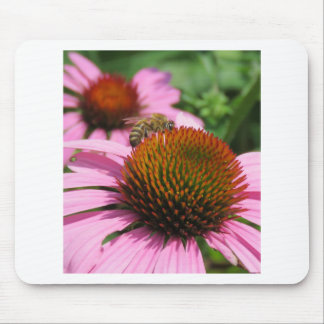Purple Coneflower with Bee Mouse Pad