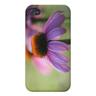 Purple Coneflowers Case iPhone 4/4S Cover