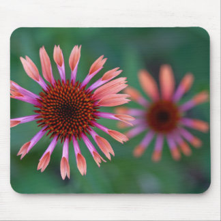 Purple Coneflowers Mouse Pad