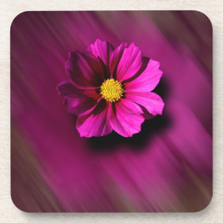 Purple Cosmo with Blurred Background Beverage Coaster