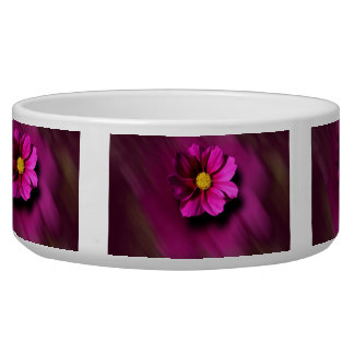 Purple Cosmo with Blurred Background Bowl