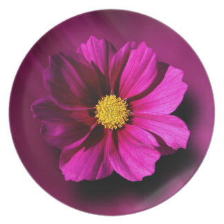 Purple Cosmo with Blurred Background Dinner Plate