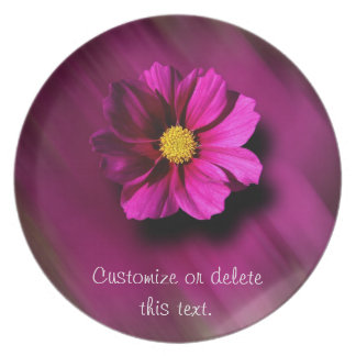 Purple Cosmo with Blurred Background Plate