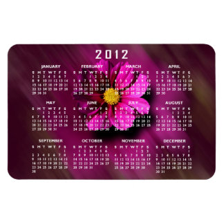 Purple Cosmo with Blurred Background Rectangular Photo Magnet