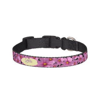 Purple Cosmos Flower Design on a Black Background Pet Collar