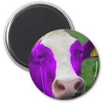 purple cow magnet