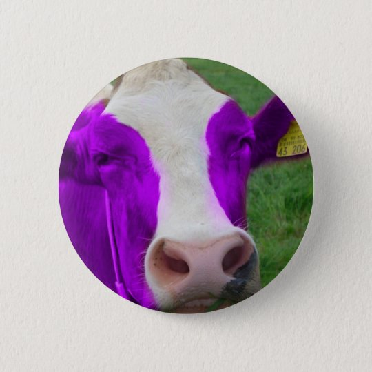 purple cow pinback button