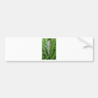 Purple Crazy Flower Bumper Sticker
