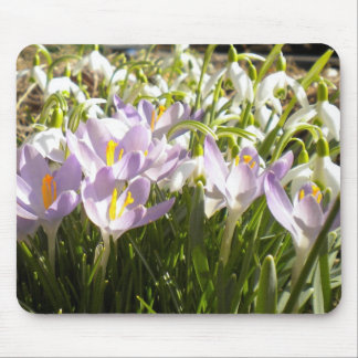 Purple Crocus and Snowdrops Mousepad