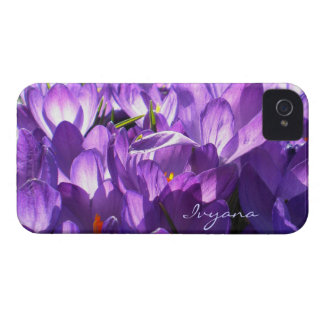 Purple Crocus Blackberry Bold Case *Personalize*