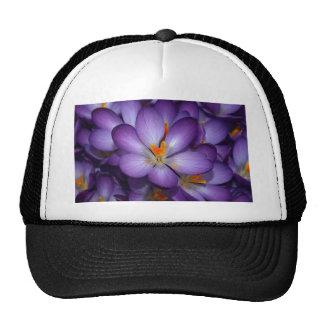 Purple Crocus Bouquet Hat