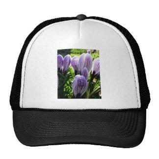 Purple Crocus Flower Hat