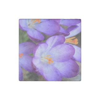 Purple Crocus For FMS Awareness Stone Magnet