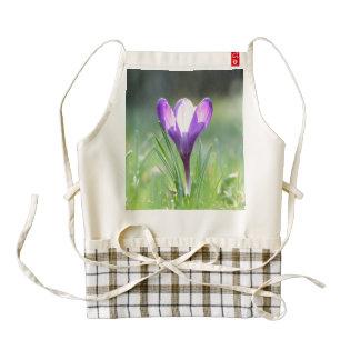 Purple Crocus in spring Poster Zazzle HEART Apron