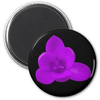 Purple Crocus Magnet