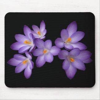 Purple Crocus Mouse Pad