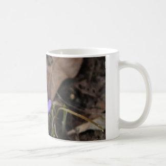 Purple crocus mug