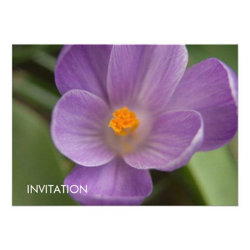 Purple Crocus PICT5930 Personalized Invitation