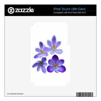 Purple crocuses 02 skin for iPod touch 4G