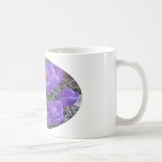 Purple Crocuses Mugs
