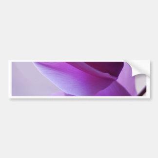 Purple Cyclamen Bumper Sticker
