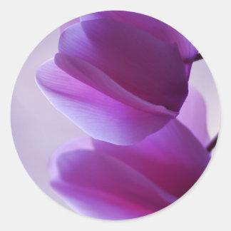 Purple Cyclamen Classic Round Sticker