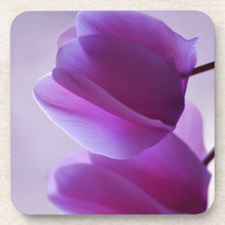 Purple Cyclamen Coaster