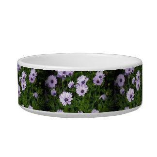 Purple Daisies Bowl