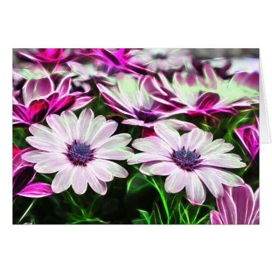 Purple Daisies Card
