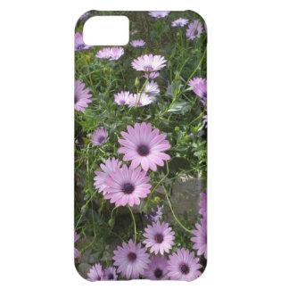 Purple daisies iPhone 5C case