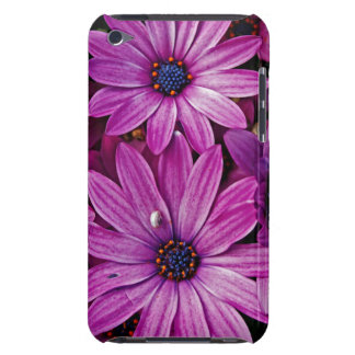 Purple Daisies iPod Touch Case-Mate Case