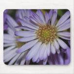 Purple Daisies Mousepad