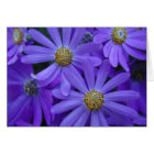 Purple Daisies - Note Card #1