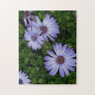 Purple Daisies Puzzle puzzle