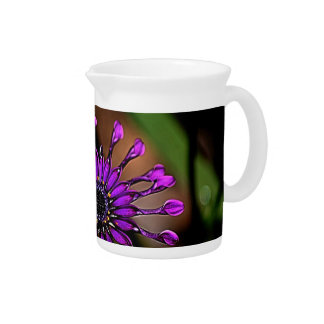 Purple daisy and its meaning drink pitchers
