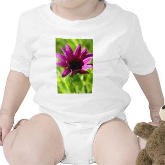 Purple Daisy Baby Bodysuit