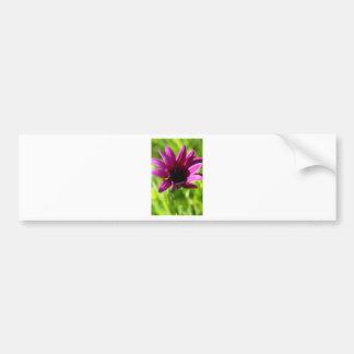 Purple Daisy Bumper Sticker