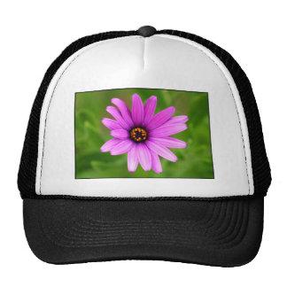 Purple Daisy Cap Trucker Hat