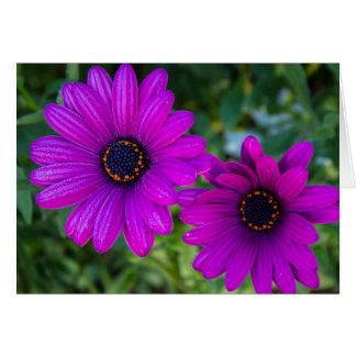Purple Daisy Card - Blank Inside