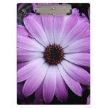 Purple Daisy Clipboard